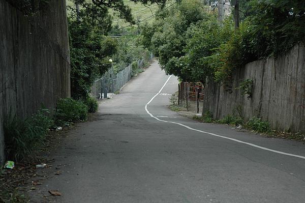 下坡路段.jpg
