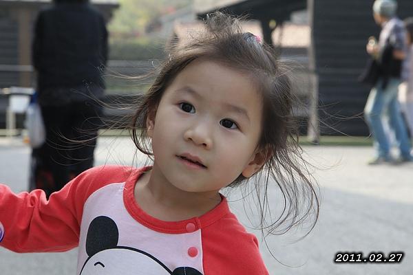2011-0227-063.jpg