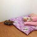 這是我的房間