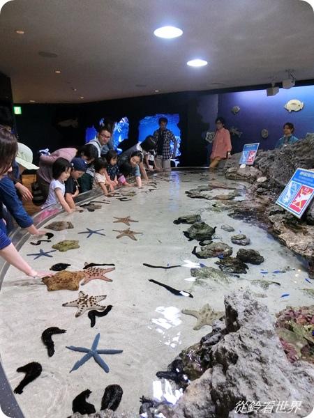 201405沖繩之旅3.JPG