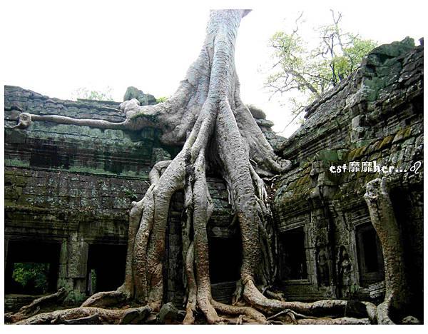 塔普倫神廟4.jpg