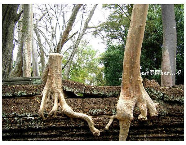 塔普倫神廟7.jpg