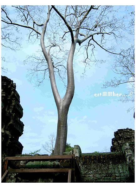 塔普倫神廟12.jpg
