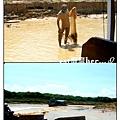 洞里薩湖2.jpg
