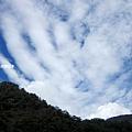 楓葉雲.jpg