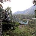 奧萬大吊橋3.jpg