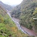 奧萬大吊橋15.jpg