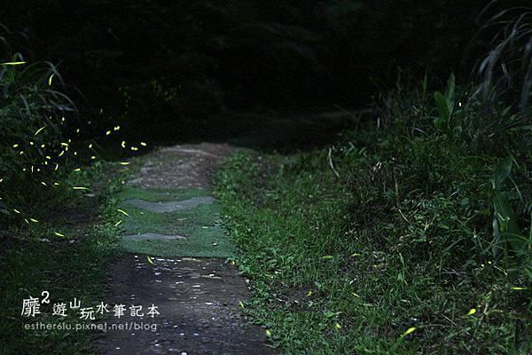 _MG_2088.JPG