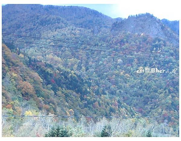 北海道3.jpg