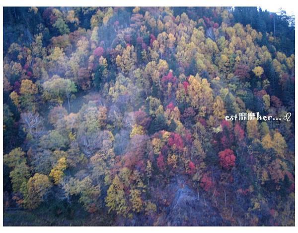 黑岳4.jpg