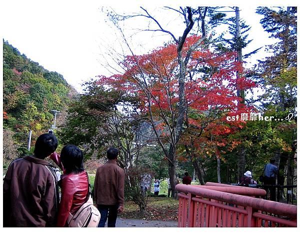 瀧之上公園6.jpg