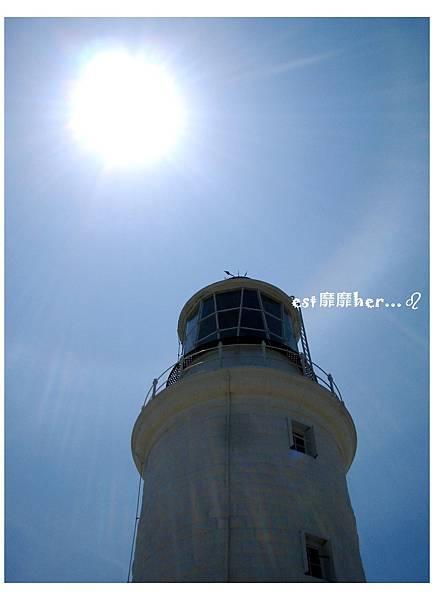 東犬燈塔2.jpg