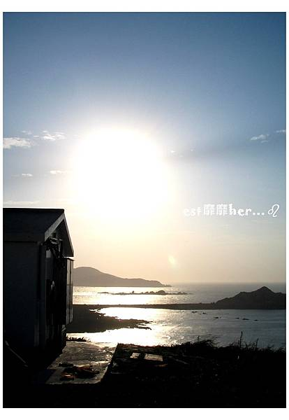 東犬燈塔8.jpg