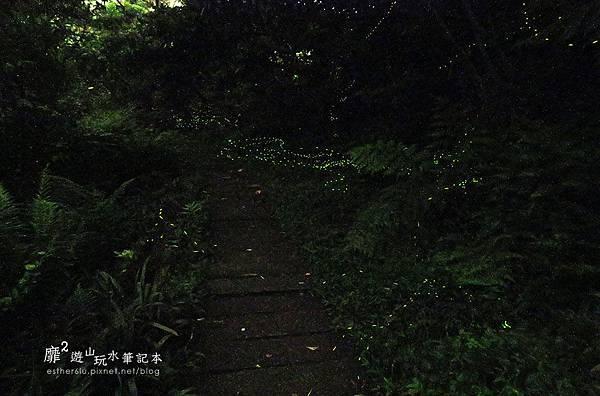 IMG_3407.JPG