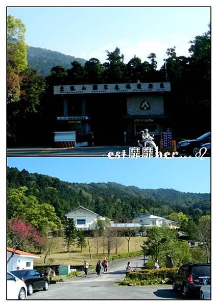 東眼山.jpg