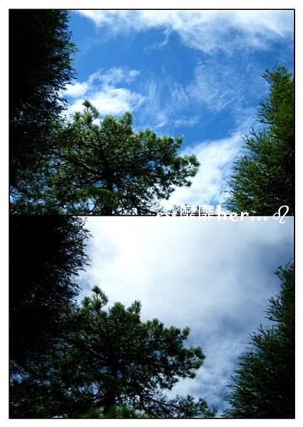 觀霧2.jpg