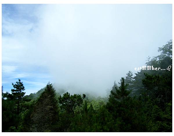 觀霧3.jpg