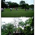 綠風11.jpg