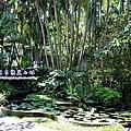 7 庭園造景