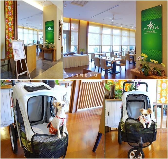 12 台東鹿鳴溫泉酒店熱氣球享鹿飛飛