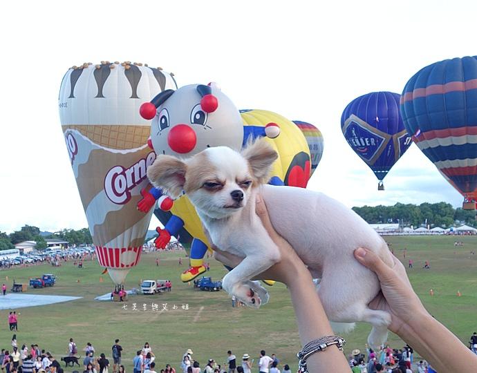 29 台東鹿鳴溫泉酒店熱氣球享鹿飛飛