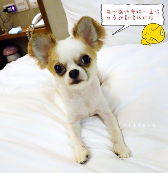 39 台東鹿鳴溫泉酒店熱氣球享鹿飛飛