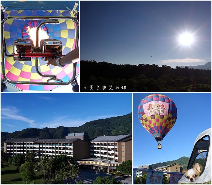42 台東鹿鳴溫泉酒店熱氣球享鹿飛飛