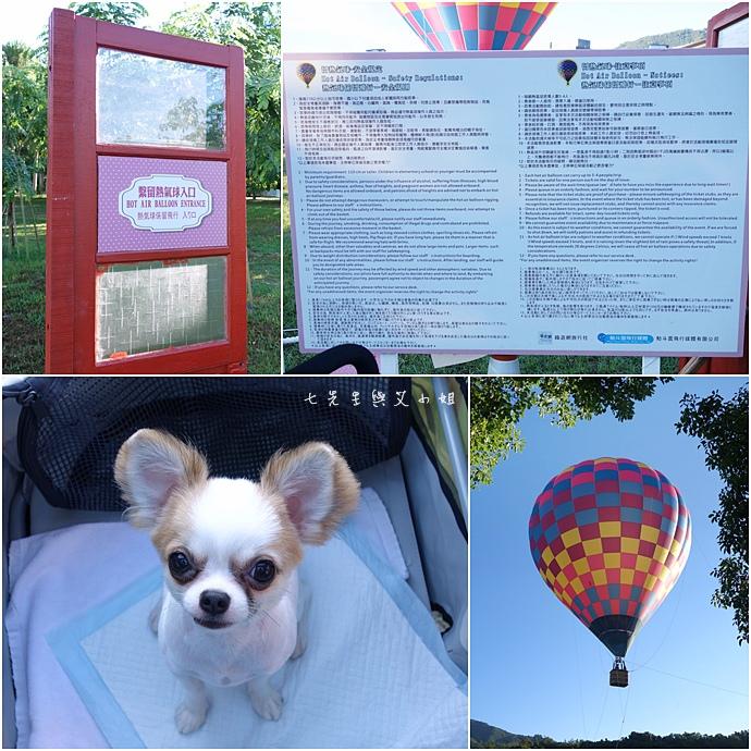 41 台東鹿鳴溫泉酒店熱氣球享鹿飛飛