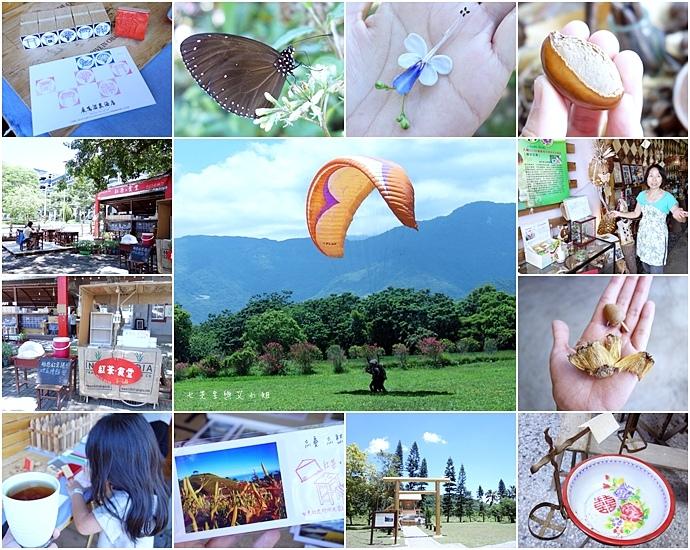 46 台東鹿鳴溫泉酒店熱氣球享鹿飛飛