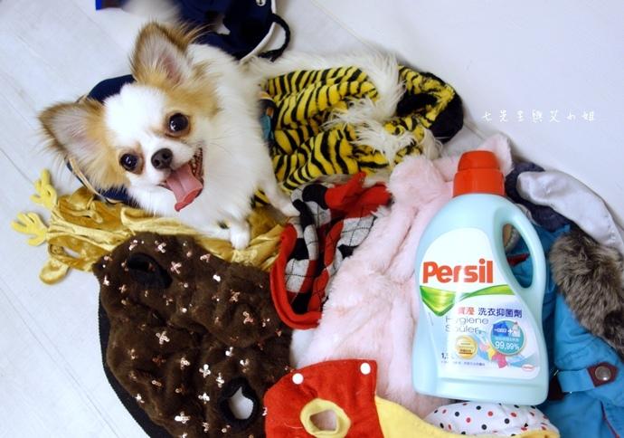 6 寶瀅 Persil 洗衣抑菌劑.JPG