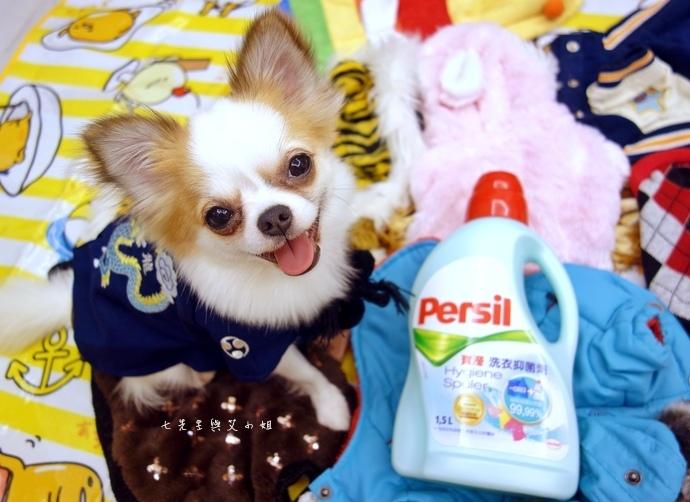 20 寶瀅 Persil 洗衣抑菌劑.JPG