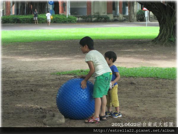 2013.0622@成大榕園1.jpg