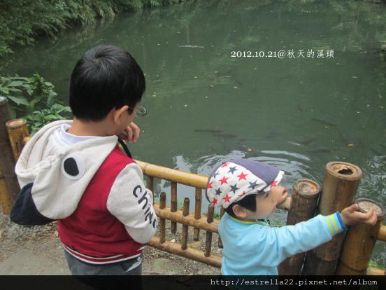 2012.10.21溪頭7.jpg