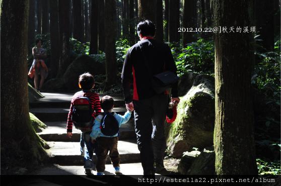 2012.10.21溪頭14.jpg