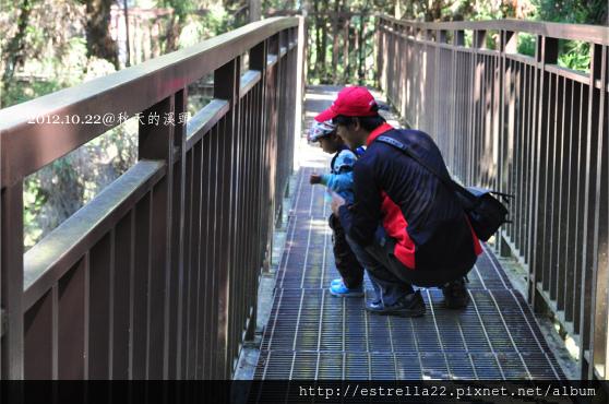 2012.10.21溪頭17.jpg