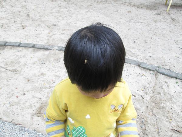 2013.1221@彰化華陽公園+禾家牧場11
