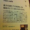 【Rice Caff'e 米咖啡】日本的米咖啡(純屬巧合)