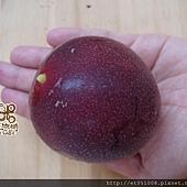 【Rice Caff'e 米咖啡】水果鬆餅-季節水果-百香果