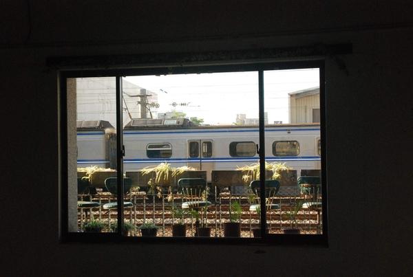 鐵道藝術村-透過窗戶看火車另有一番風味吧.jpg