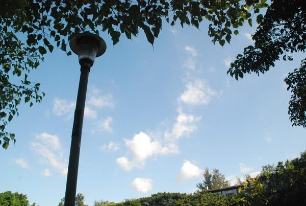 新竹市公園-坐著休息,突然發現天空真美.jpg
