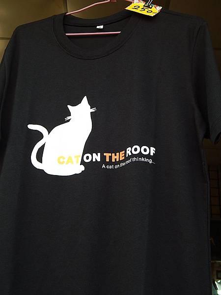 虎尾3D屋頂上的貓(頂溪社區貓公園)     農博(農業博覽會)亮點84介紹 (82)