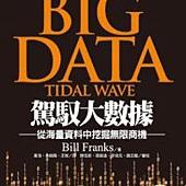 駕馭大數據:從海量資料中挖掘無限商機