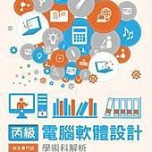 丙級電腦軟體設計學術科解析