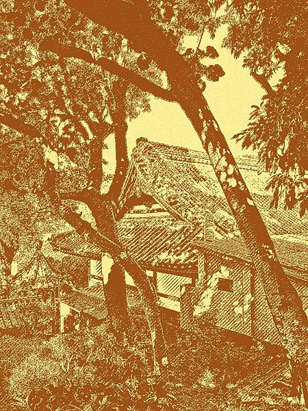北投普濟寺(真言宗鐵真院)