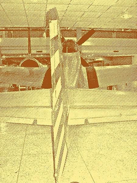 P-51D 野馬式戰鬥機