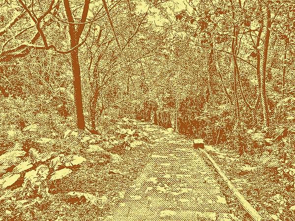 台北草山水道系統內的水管路