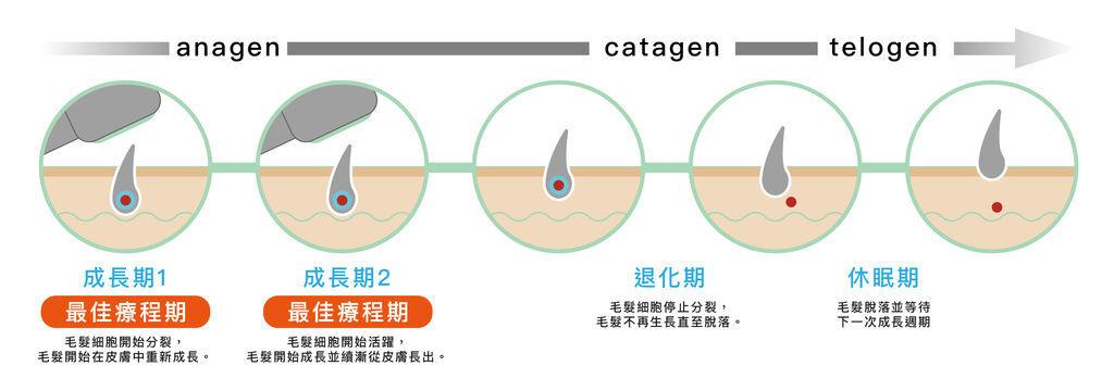 cycle-02.jpg