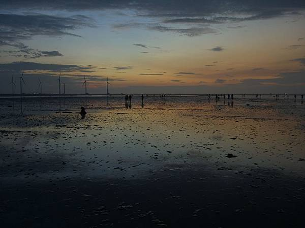 高美濕地夕陽