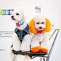 2012 台北國際攝影器材大展-Day4- 寶貝寵物怎麼拍才可愛