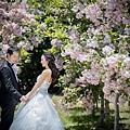 婚紗攝影棚:台北婚紗,台中婚紗,高雄婚紗,台南婚紗,桃園婚紗,新竹婚紗